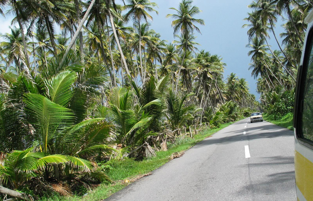 driving-in-tobago